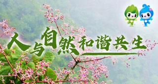 人与自然和谐共生|万物共生大美广东
