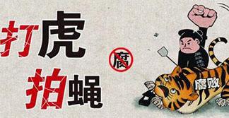 海南省政协原副主席王勇受贿案一审宣判:无期徒刑