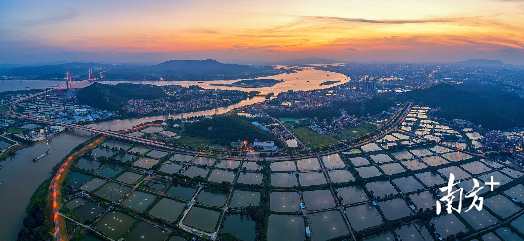 7月4日,佛山顺德龙江甘竹滩最迟日落时分,美景如幻。 黑暗骑士 摄