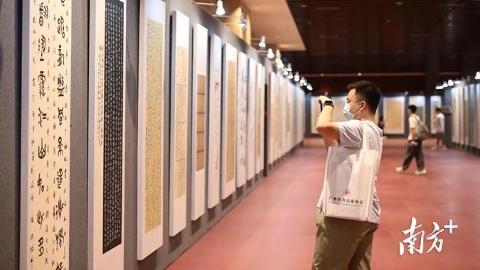 看老师们挥毫泼墨,第二届广东省教师书法作品展开展了!