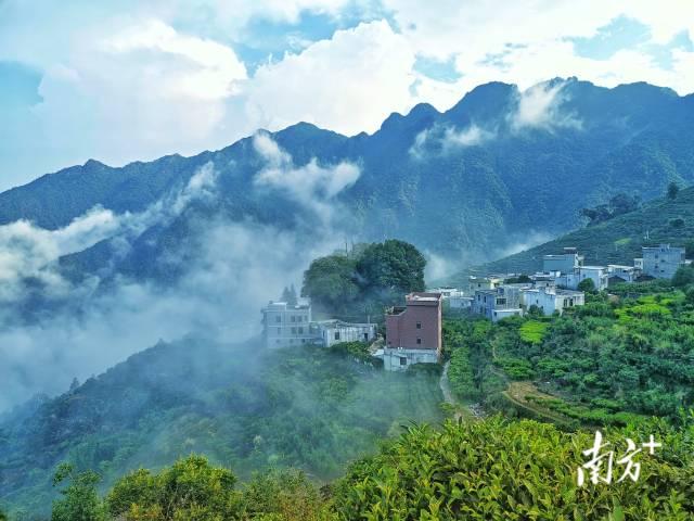 10月6日,深秋时节,潮州潮安区山腰上的官头畲村,云雾缭绕,美如仙境。林伟焕 摄