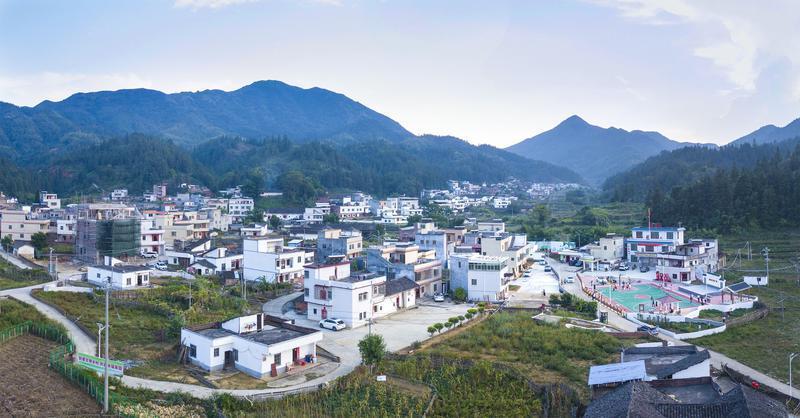 """桂林村積極發展特色民宿、星級茶家樂,成為遠近聞名的""""網紅村""""。(攝影:黃贊福)"""