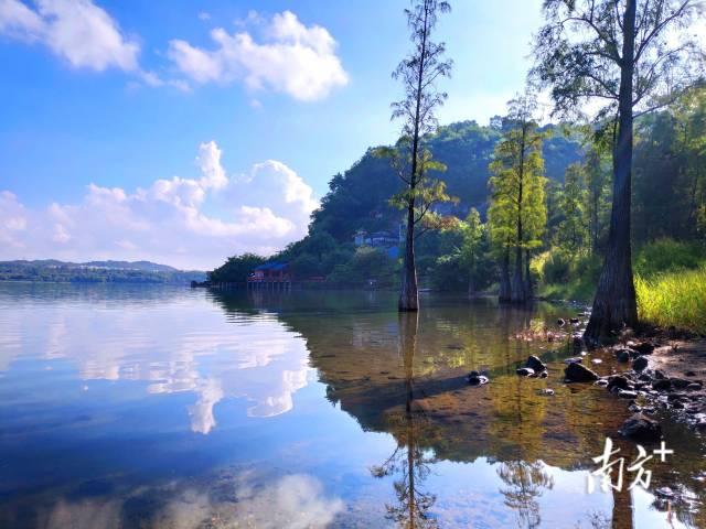 10月3日,湛江湖光岩风景区,山清水秀,风光旖旎。陈永锋 摄