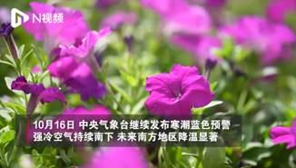 冷空气带来大幅降温!广州秋风瑟瑟凉意升级